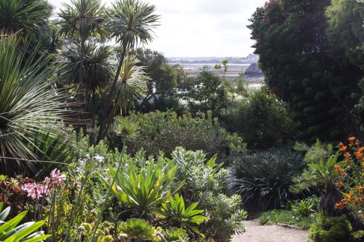 16-9-17-roscoff-exotic-garden-lr-0614