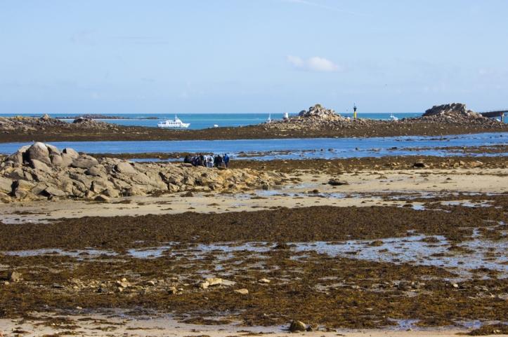 The Ferry between Roscoff & the Ile de Batz
