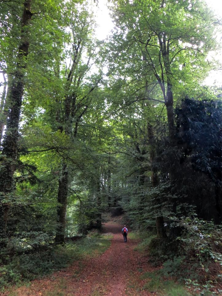 Walking at Locmaria Berrien