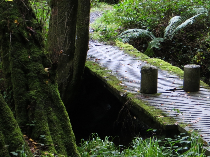 16-9-27-walk-from-loceguiner-lr-2611