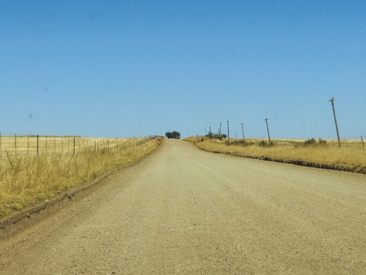 The road from Gouda to Riebeek West and Mooreesburg