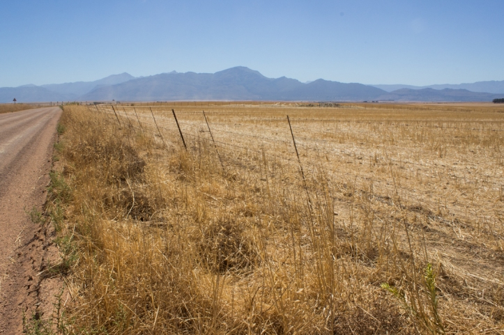 The mountains around the Tulbagh Valley