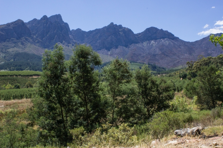 The Tulbagh Valley
