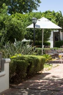 The Teacup's garden