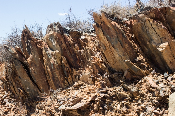 Upright, folded ... shale?