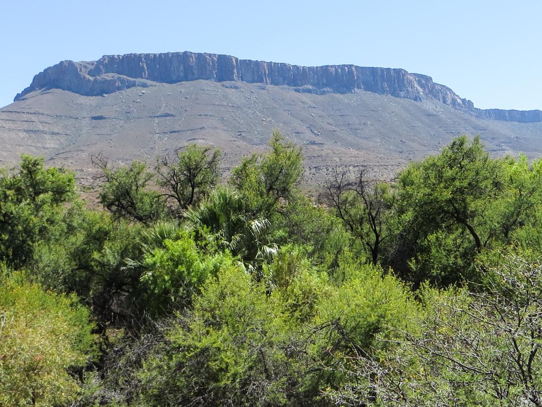 Doornhoek in the Karoo National Park