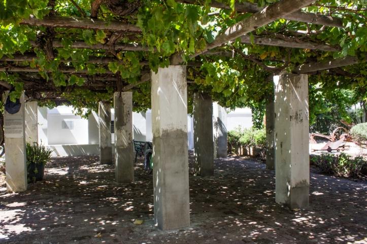 The Old Vine, Reinet House
