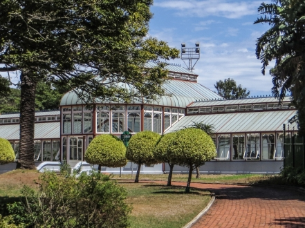The Pearson Conservatory, PE