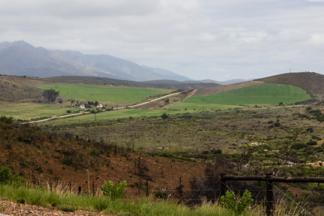 The R62 in the Langkloof
