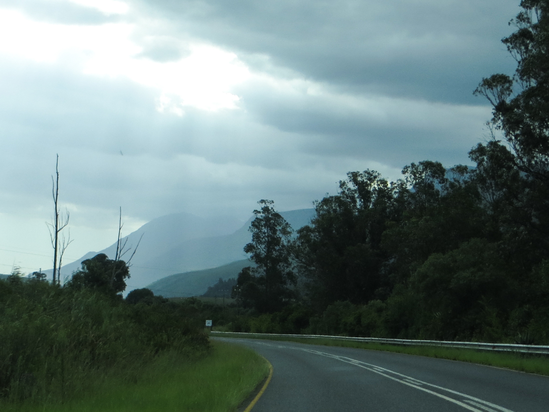 The road to Suurbraak