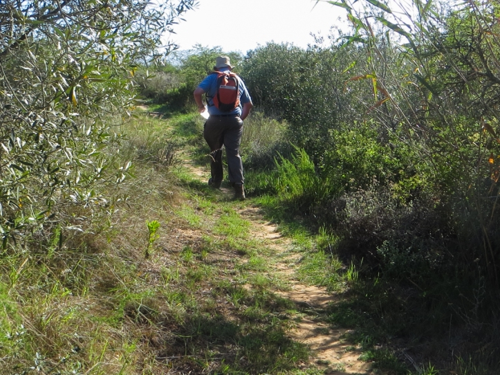 The Aloe Trail in the Bontebok National Park