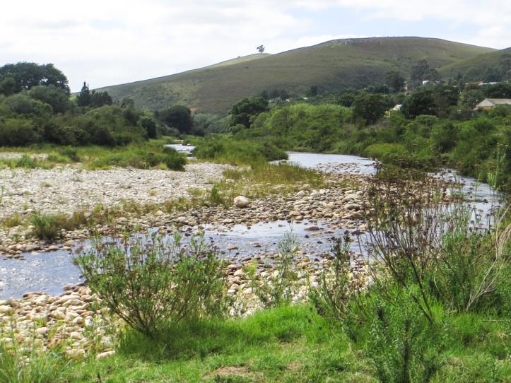 The Buffelsjags River, Suurbraak