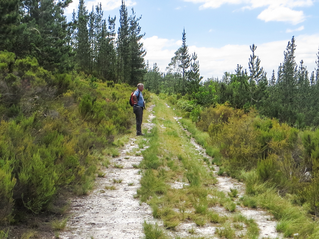 Walk at Suurbraak