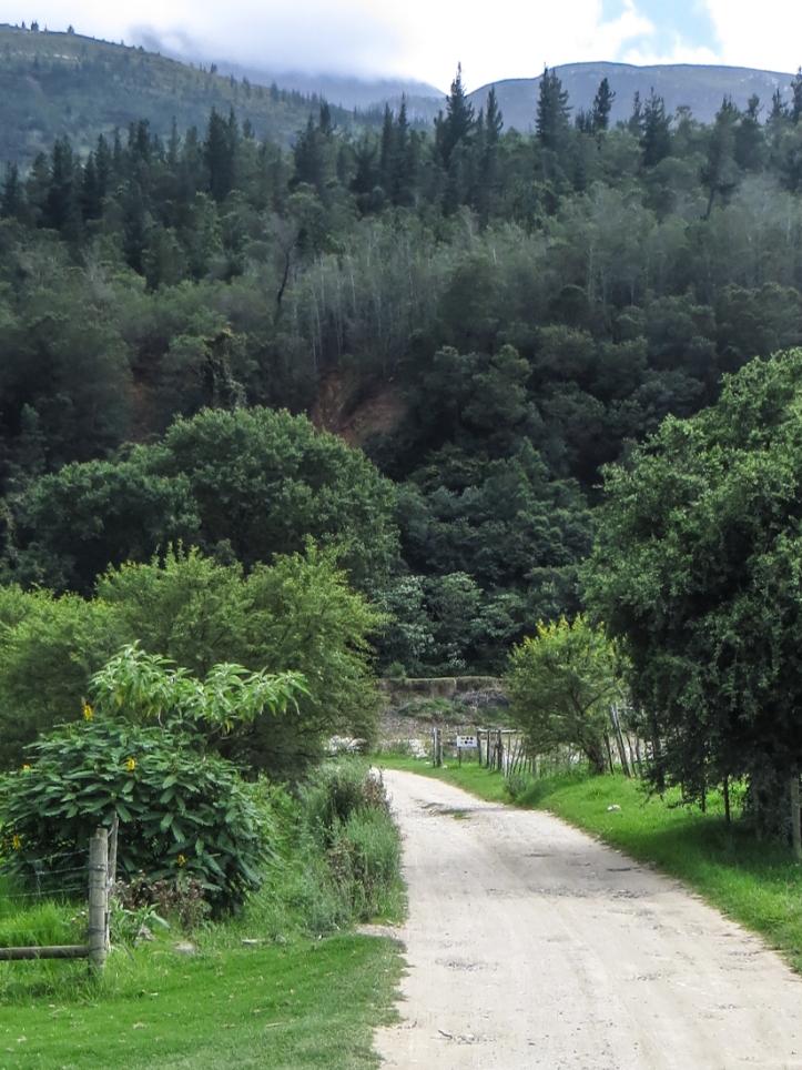 Start of walk, Suurbraak