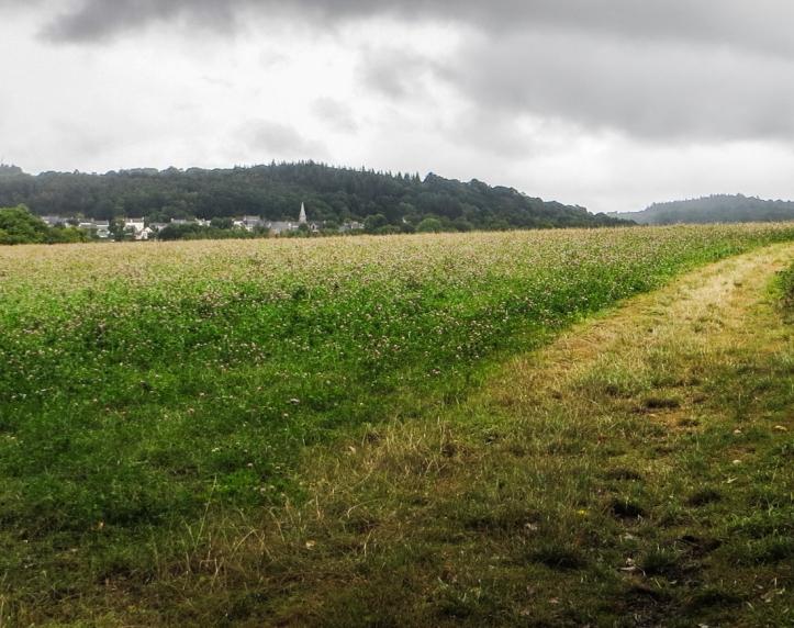 Walking towards Caurel