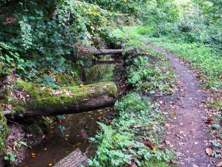 Leat alongside the path outside Moncontour