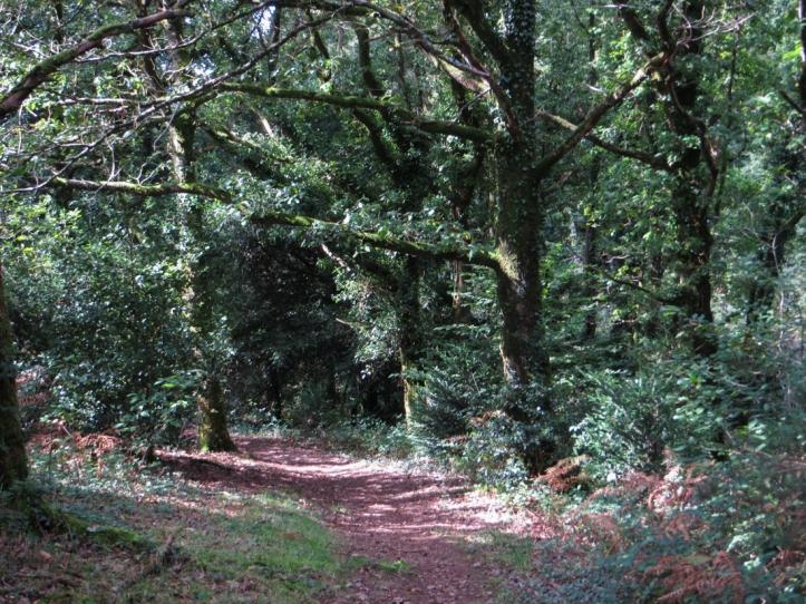 Circuit du Plateau around Hanvec