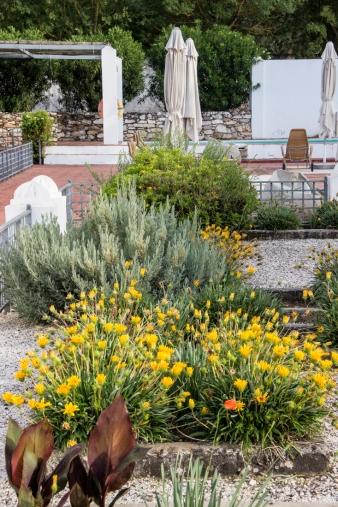 The garden at the side of the Pousada Vila Vicosa