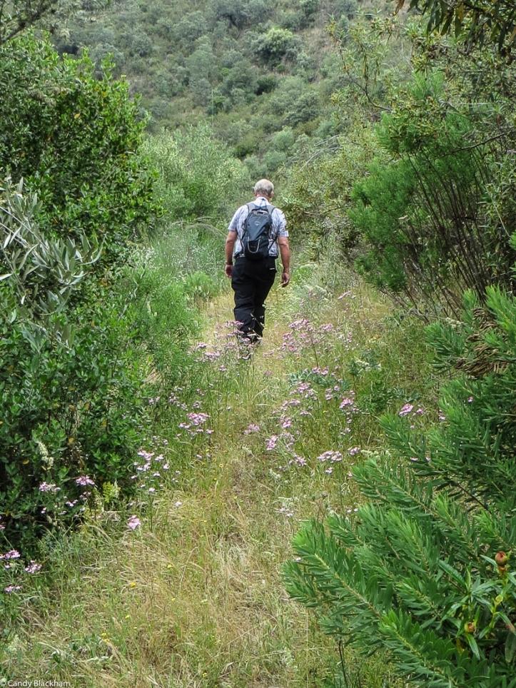 Walking at Velada