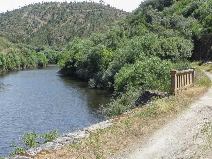 The River Nisa again