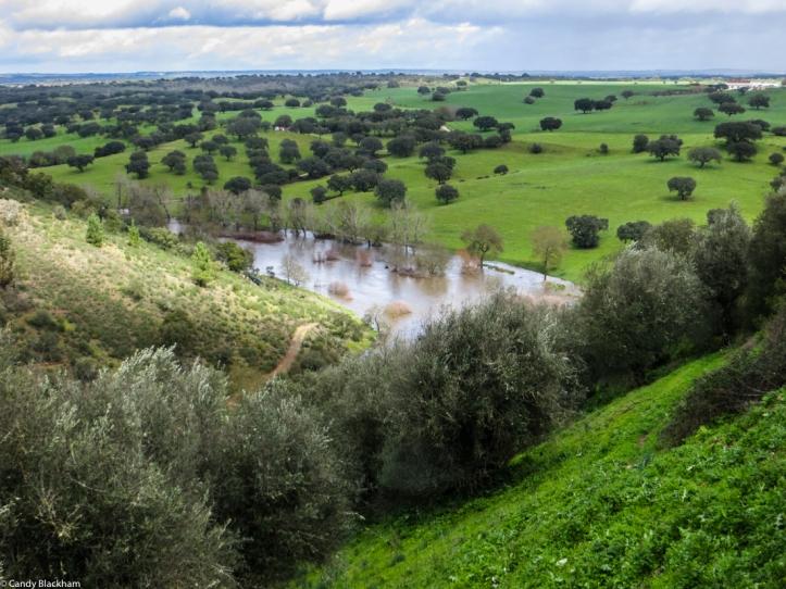 The River Seda