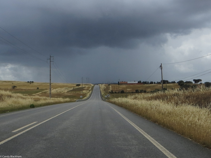 The main road from Terena to Portel
