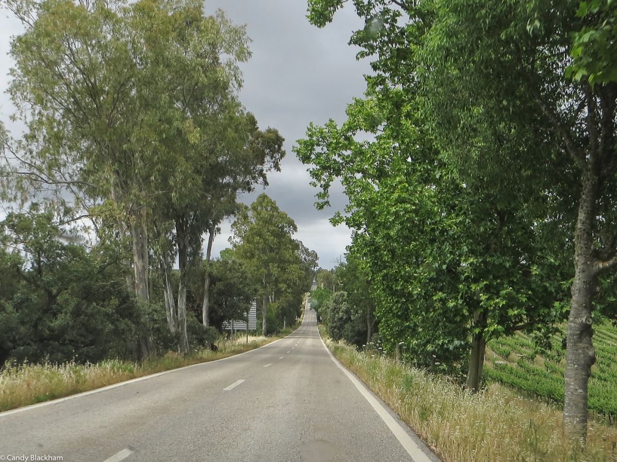 The main road from Vila Vicosa to Alandroal