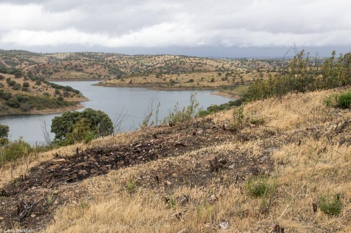 The countryside around the Alquevar Reservoir
