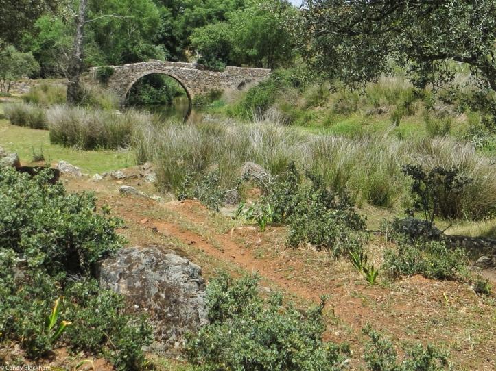 Ponte Velha over the Ribeira Grande