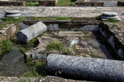 Mosaics at Pisoes