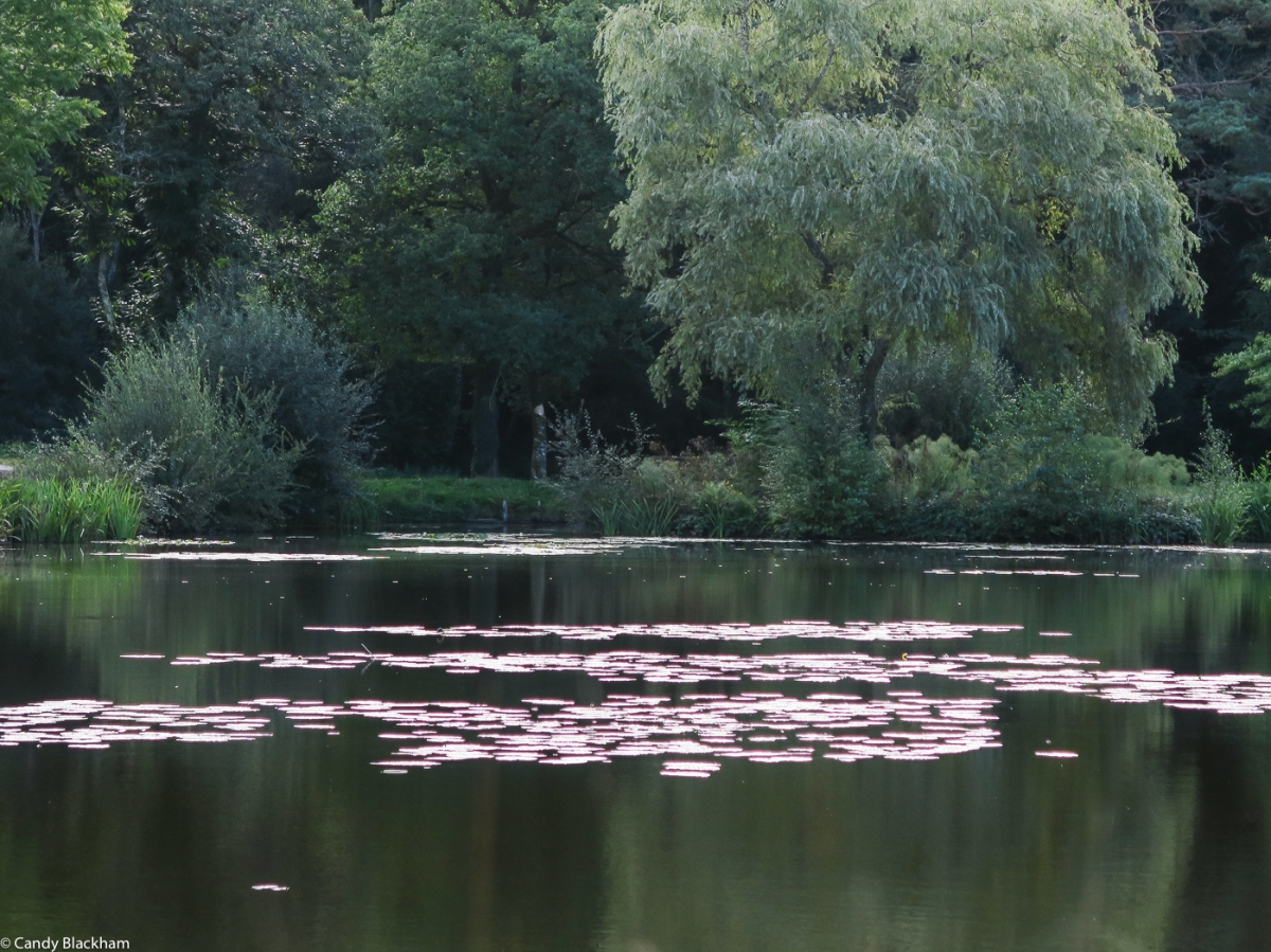 Lakeside at Le Petit Forest, Camors
