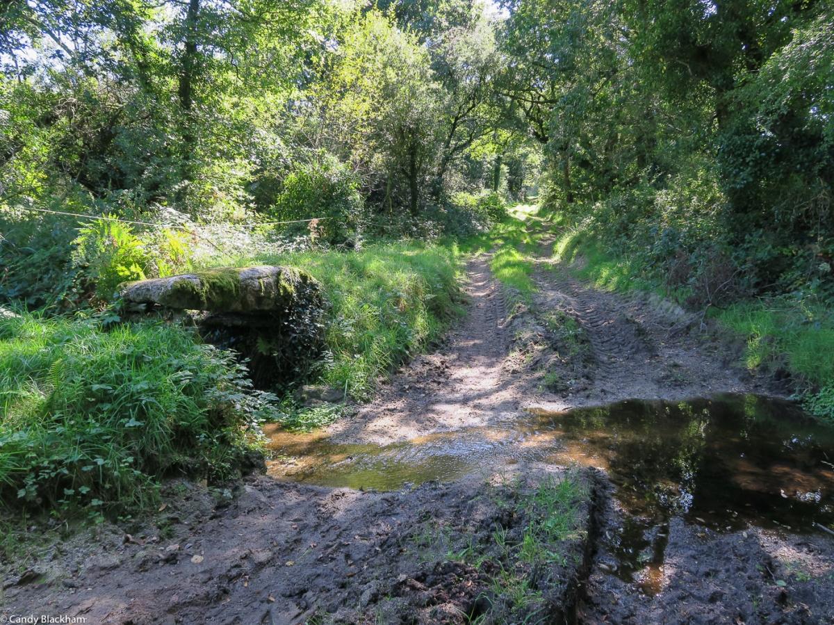 A lane around La Feuillee