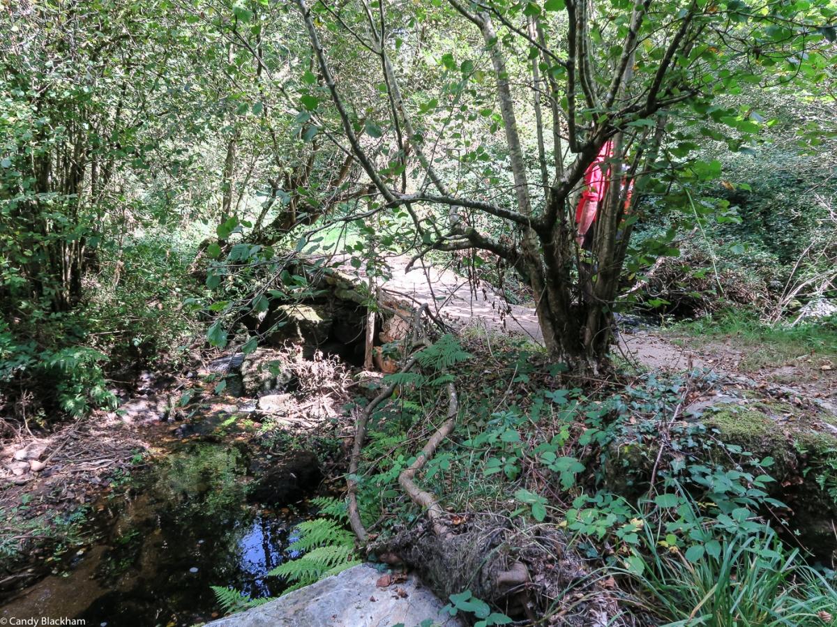The River Squiriou