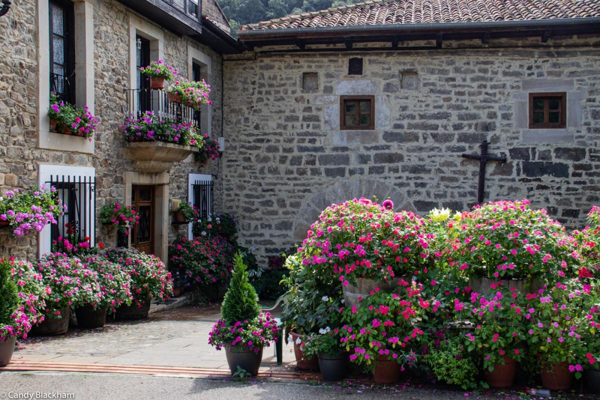 The flowers at the entrance to Santa Maria de Piasca