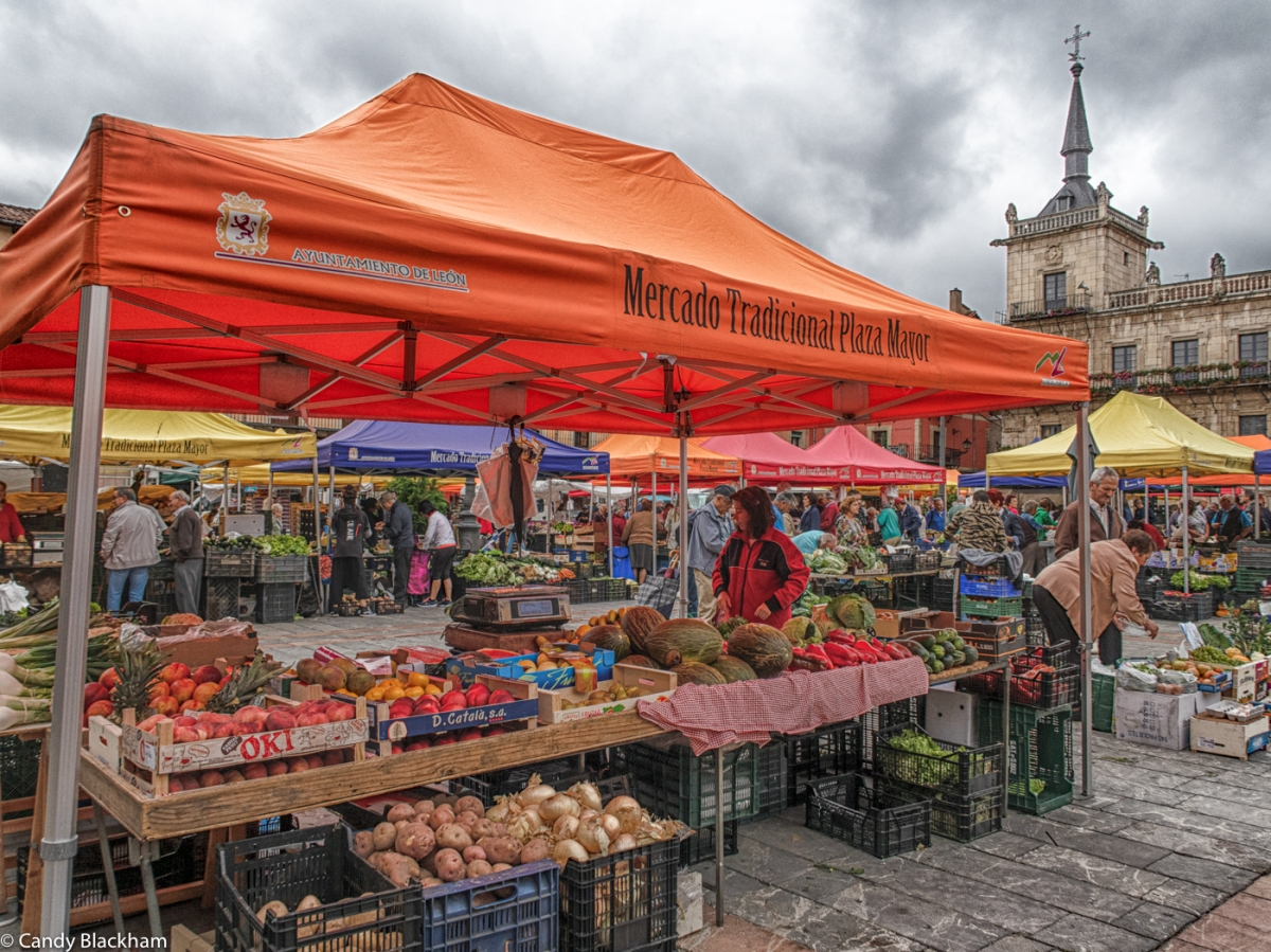 Market day in the Plaza Mayor, Leon