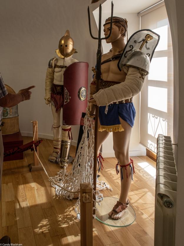 A Reterio Gladiator