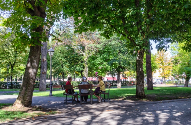 A group playing cards in the shade of the Park of San Francisco